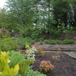 A view of back garden